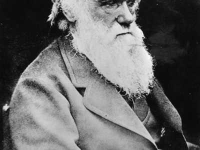 达尔文小时候的故事 分享科学家小时候的故事-